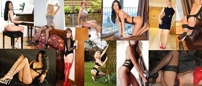 A collection of Surrey independent escort 's
