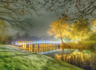 Painshill Park Cobham